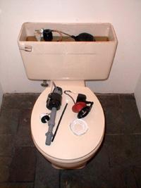 Phantom Flusher