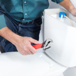Toilet Repair : Does Your Toilet Need Repaired?