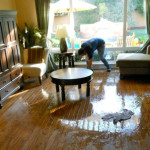 Water Damage – 5 Things You Need to Know